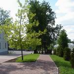 Pushkin Street | Squares, Streets, Bridges | Vitebsk - Attractions