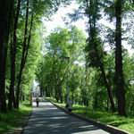 Putna Street | Squares, Streets, Bridges | Vitebsk - Attractions